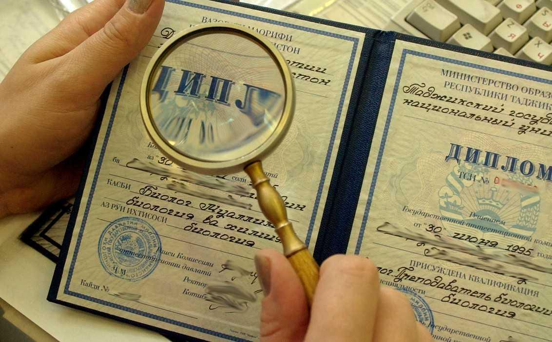 20% молодых специалистов не подтвердили своей квалификации