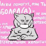 При помощи котиков в ИТМО решили победить коронавирус