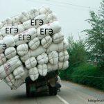 Начало ЕГЭ снова могут перенести на неопределенный срок