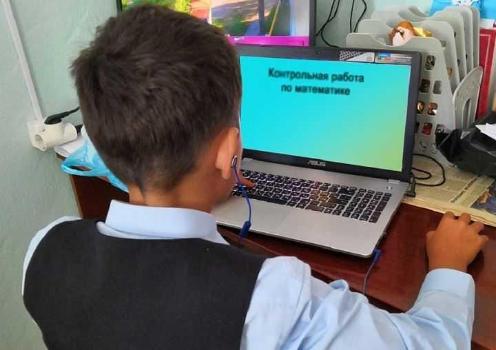Дистанционное обучение в школах в 2020 году не планируется